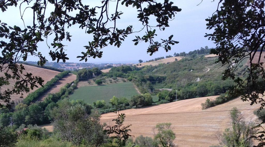 La Cava di San Gaudenzio o monte della Gessara verso Sant'Angelo