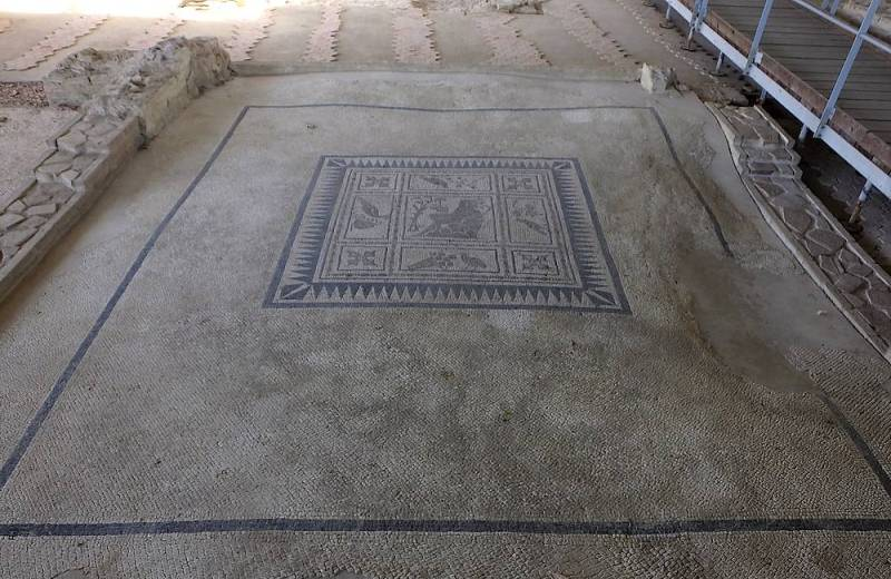 Pavimento a mosaico nella Domus dei Coiedii del Parco Archeologico dell'antica Città Romana di Suasa