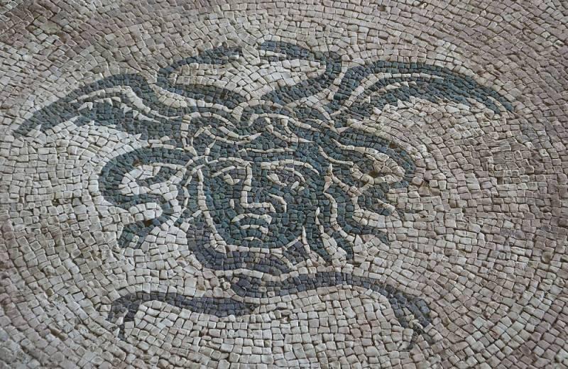 Mosaico nella Domus dei Coiedii del Parco Archeologico dell'antica Città Romana di Suasa