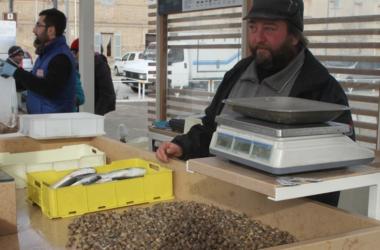 Lumachine al mercato del Porto di Senigallia